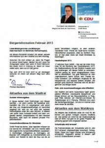 buergerinformation-2013-02